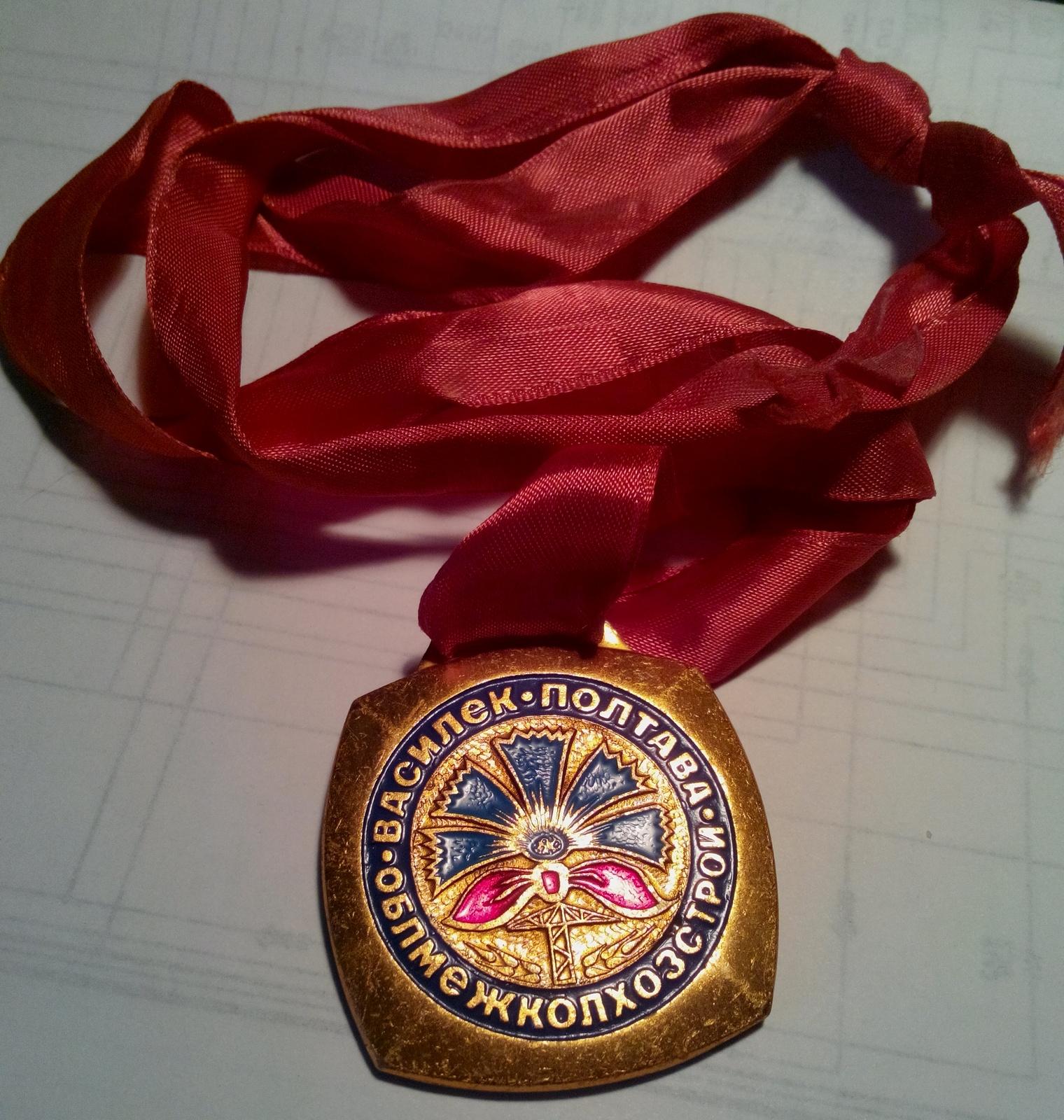 Василёк Головач медаль